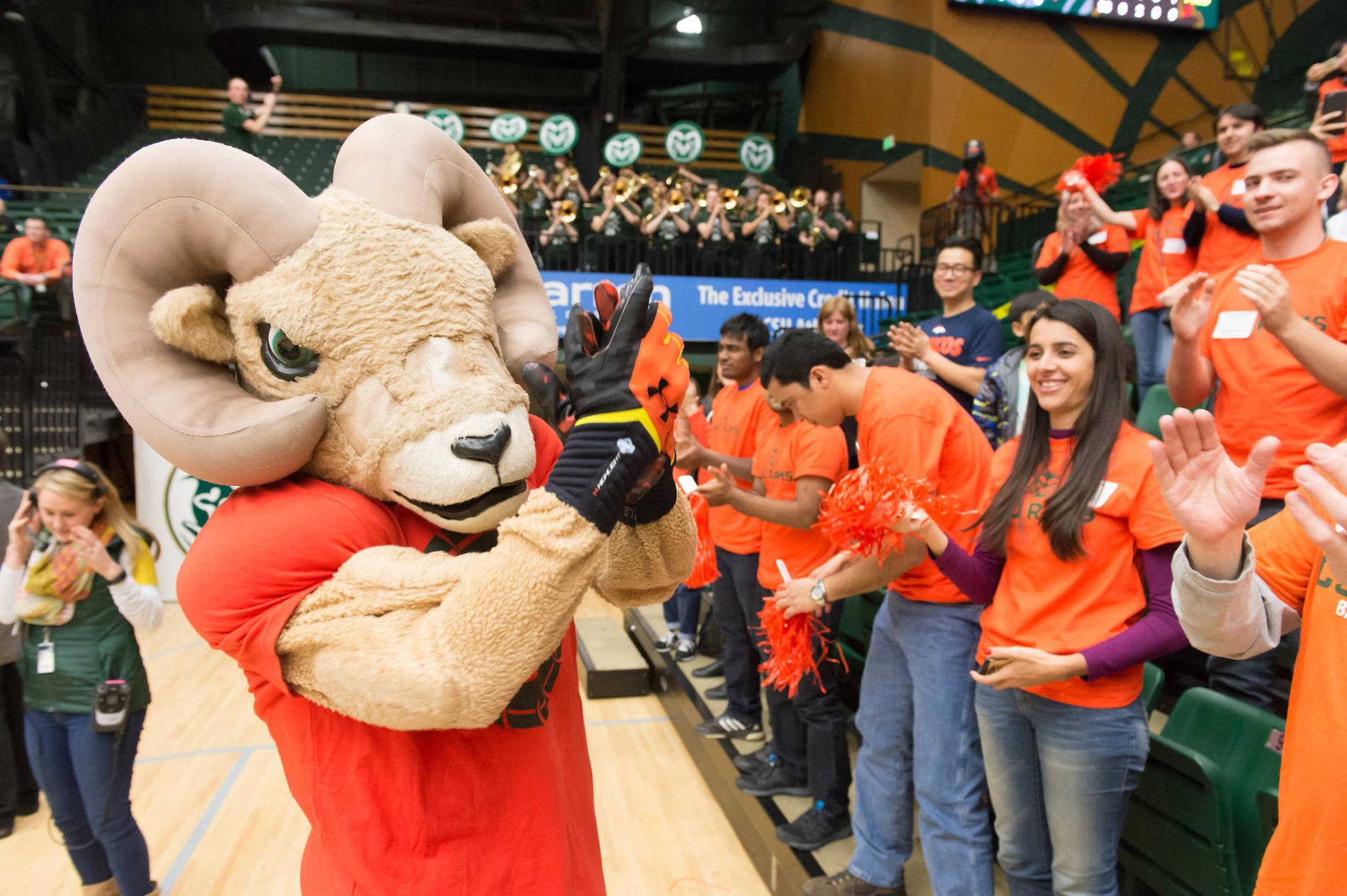 cam the ram mascot in front of a crowd